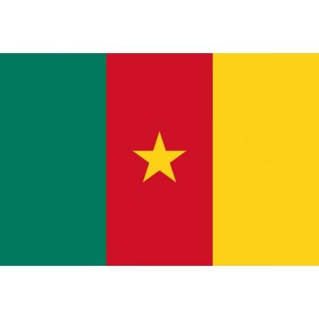 Drapeau Cameroun - tissu - 90 x 150cm