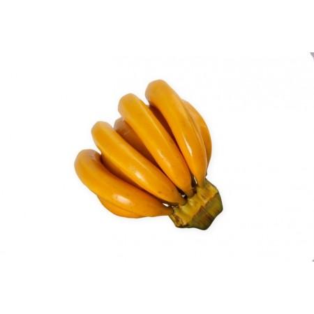 Regime de Bananes - pvc - 18 x 15 x 11 cm