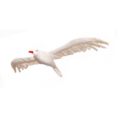 Mouette - polystyrène/plumes - envergure 85cm