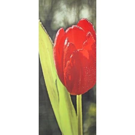 """Kakémonos """"tulipe""""  + support - tissu - 75 x 180 cm"""