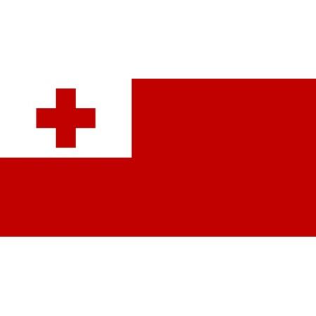 Drapeau Tonga  60 x 90 cm  - tissu