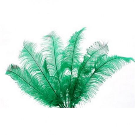 Plumes vertes - sachet de 6 - Long 60cm