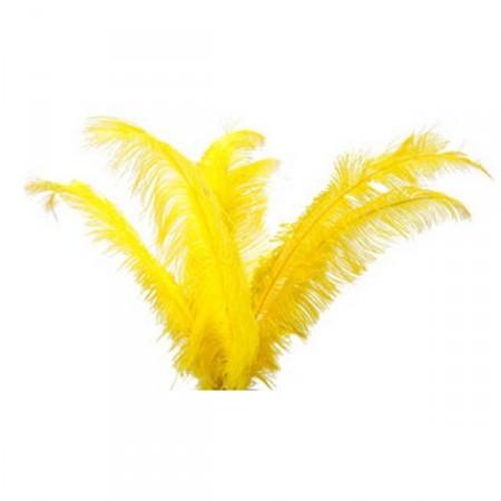 Plumes jaunes - sachet de 6 - Long 60cm