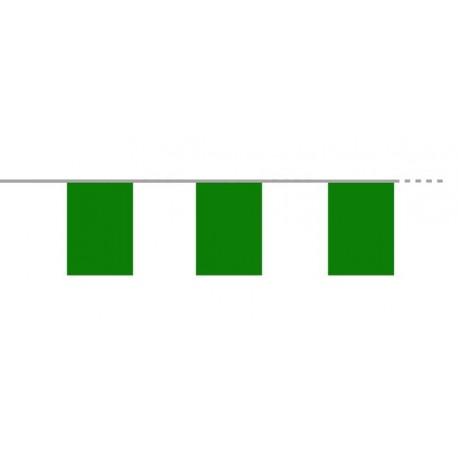 Guirlande de 10 fanions verts  20  x 30 cm - PVC - 4 ml