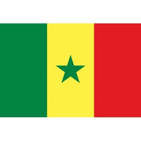 Drapeau Sénégal 60 x 90 cm - tissu