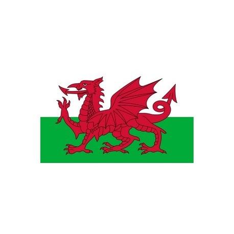 Drapeau Pays de Galles 60 x 90 cm  - tissu