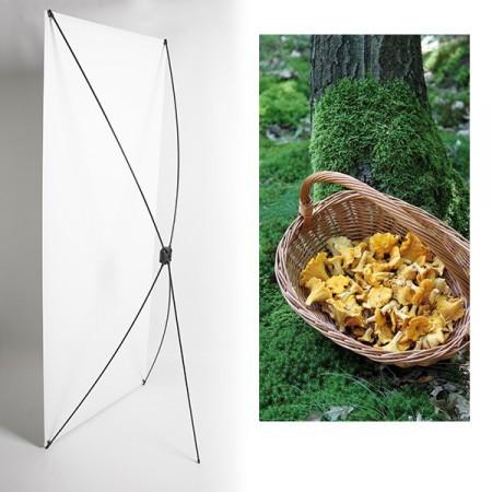 Kakemono champignons automne - 180 x 80 cm - Toile M1 avec structure  X- Banner