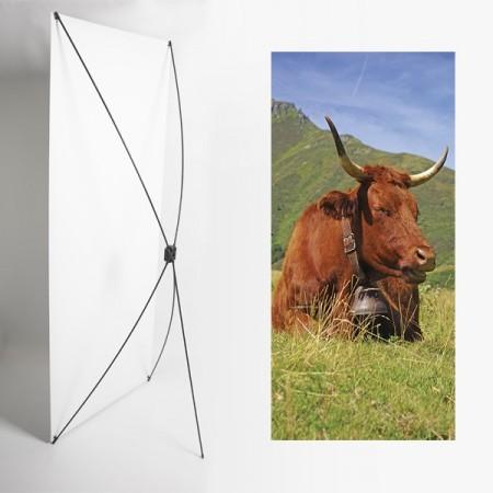 Kakemono Auvergne vache - 180 x 80 cm - Toile M1 avec structure  X- Banner