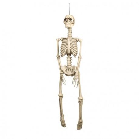 Squelette  92 x 25 cm - latex