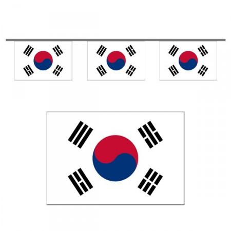 Guirlande Corée du Sud- 10 fanions 21 x 21 cm - papier - Long.500 cm