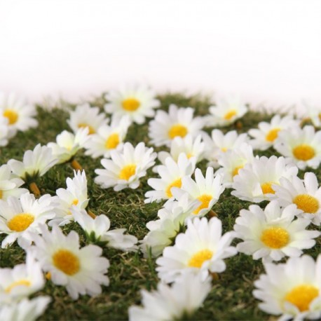 Fleurs - Sachet de 1000