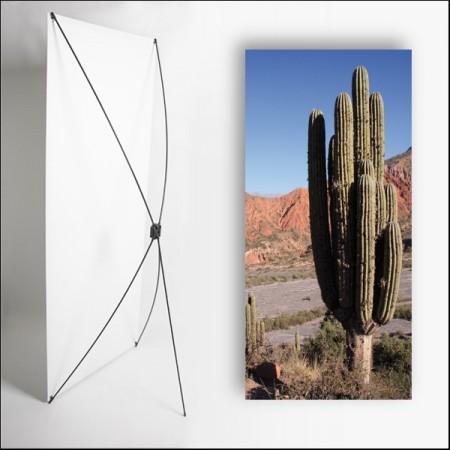 Kakemono AMS Cactus - 180 x 80 cm - Toile M1 avec structure  X- Banner