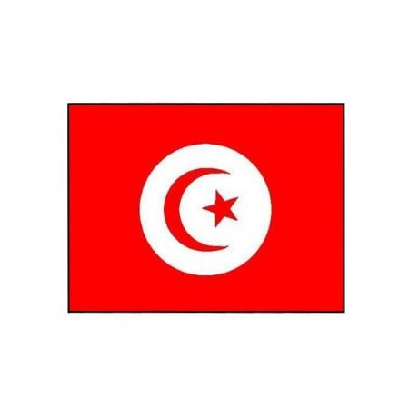 Drapeau Tunisie - tissu - 60 x 90 cm