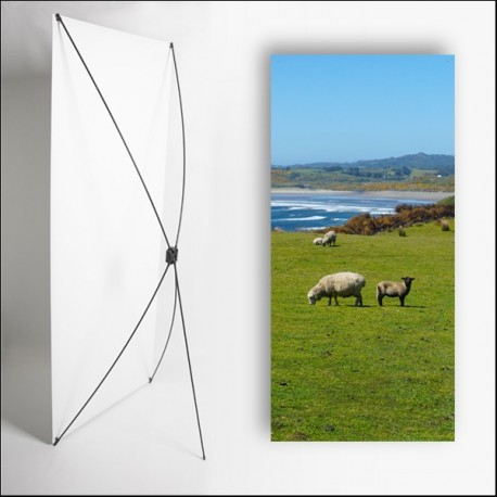 Kakemono Irlande Moutons  - 180 x 80 cm - Toile M1 avec structure  X- Banner