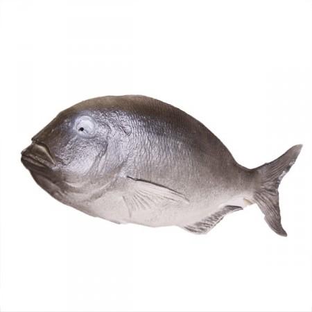 Poisson gris - pvc - Longueur 38 cm