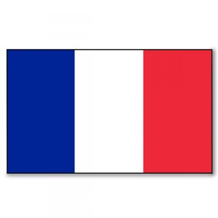 Drapeau France - tissu - 90 x 150 cm