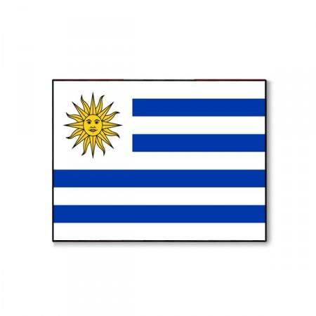 Drapeau Uruguay - tissu - 60 x 90 cm