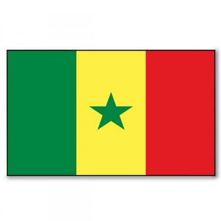 Drapeau Sénégal 90 X 150  cm - tissu