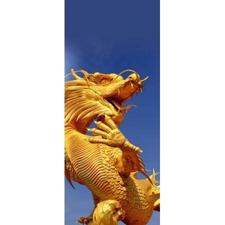 Kakemono Chine DRAGON- 180 x 80 cm - Toile M1 avec structure  X- Banner