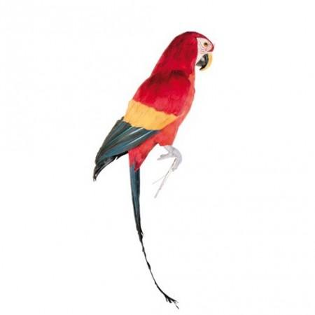 Perroquet multicolore à fixer - plumes naturelles - H.63 cm
