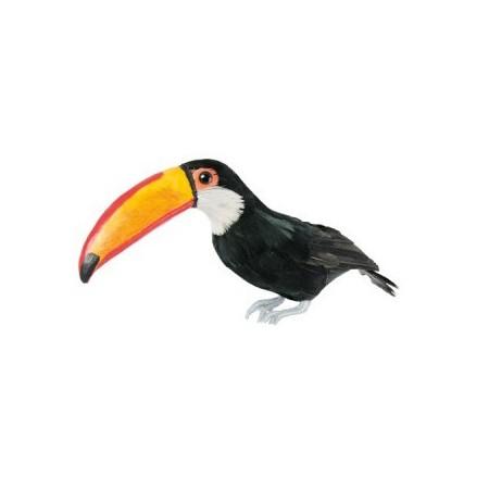 Toucan - plumes naturelles  - 9 x 35 x 19 cm