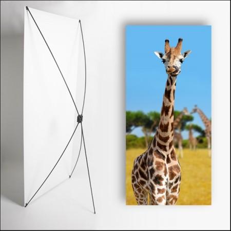 Kakemono Afrique Girafe - 180 x 80 cm - Toile M1 avec structure  X- Banner