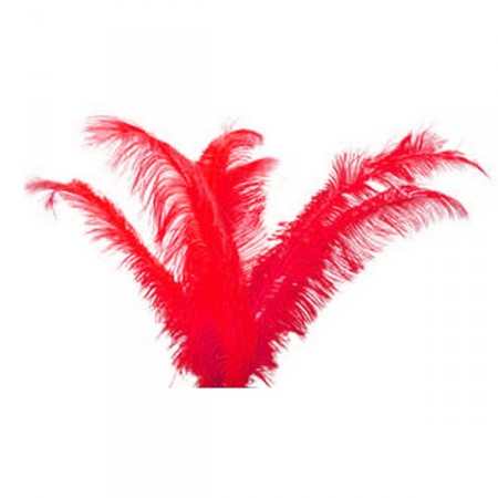 Plumes rouges - sachet de 3 - Long 60cm