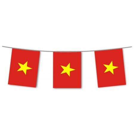Guirlande Vietnam - 10 fanions 21 x 21 cm - papier - Long.420cm
