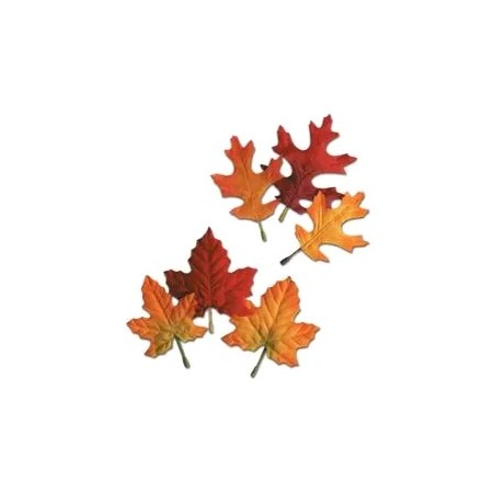 Sachet de 12 feuilles d'automne (érable et chêne)