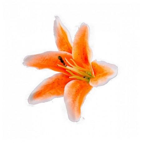 Sachet de 6 Fleurs tropicale Orange fluo 13 x 12 cm