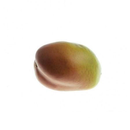 Mangue - polystyrène - longueur 10 cm