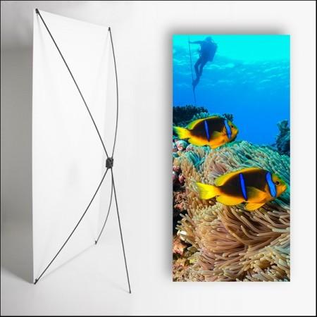 Kakemono Exotique poisson - 180 x 80 cm sur Toile M1 avec structure  X- Banner