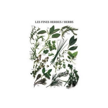 "Affiche "" Fines herbes "" - 50 x 40cm"